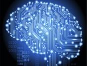 data-brain-e1338974487390