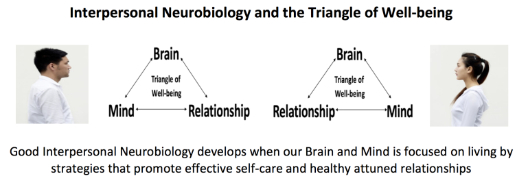Interpersonal Neuro + Triangle of Well-Being picture